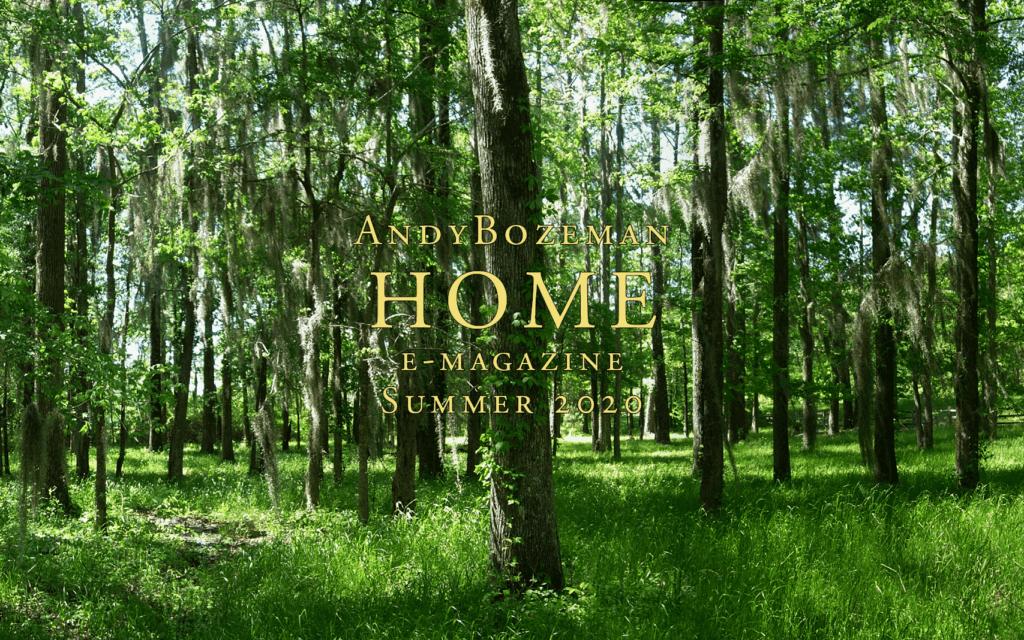 AB HOME Summer 2020 e-magazine